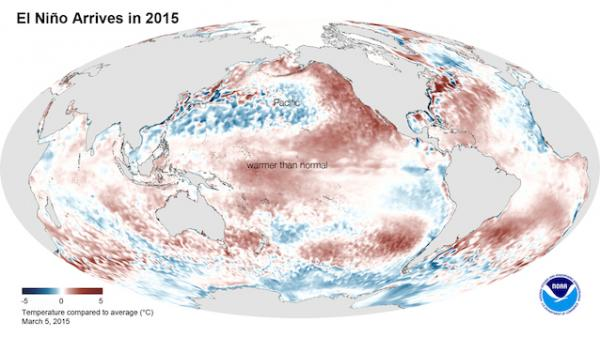 NOAA Announces Arrival Of El Niño, 2015 Poised To Beat 2014 For Hottest Year