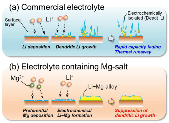 photo image Researchers use magnesium salt electrolyte additive to suppress growth of Li dendrites; more work needed to enhance…