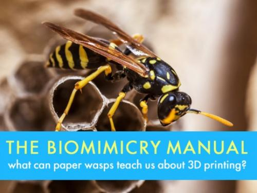 The Biomimicry Manual: What Can Paper…