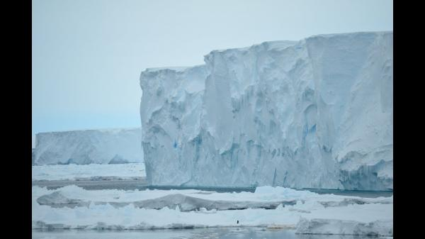 photo image Study Reveals Dangerous Antarctic Feedback Loop