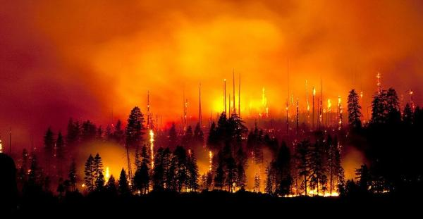 PG&E Wildfire Policies Provide…