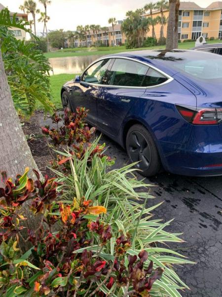 Tesla & The Government: A Contentious…