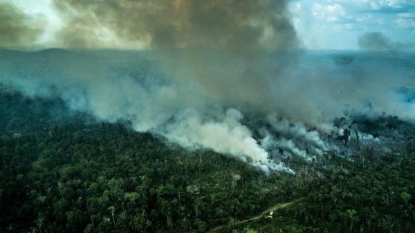 Amazon Deforestation Jumps Sharply in April