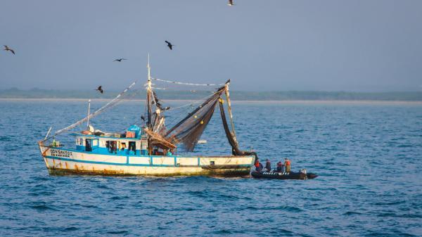 Sea Shepherd and Peruvian Government Intercept Illegal Fishing Vessels