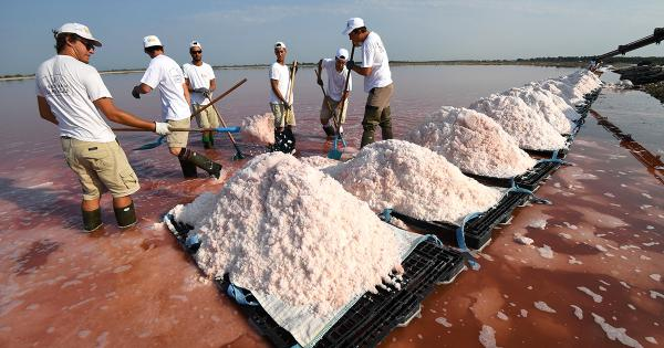 90% of Table Salt Is Contaminated With Mircroplastics