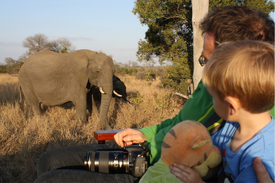 How to Travel Ethically on an African Safari